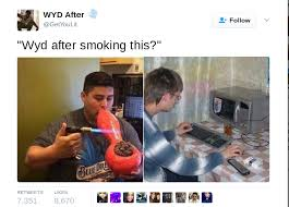 Weed Smoking Meme - wyd after smoking this funny pinterest smoke memes and humour