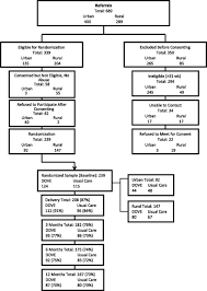 Design Options For Home Visiting Evaluation Engaging And Retaining Abused Women In Perinatal Home Visitation