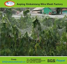 Fruit Tree Netting Hail Protection Net Wholesale Net Suppliers Alibaba