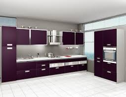 Indian Style Kitchen Designs Indian Modular Kitchens Vs European Modular Kitchens Modspace