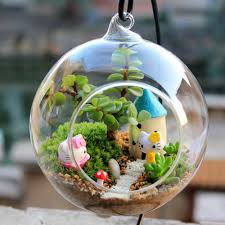 home design flowering terrarium plants landscape architects