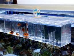 acrylic fish ring holder images Acrylic fish tank breeding house aquarium delivery room hatchery jpg