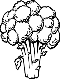 vegetable cauliflower coloring page wecoloringpage