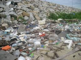 pollution rapid urbanization
