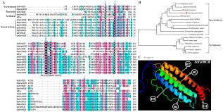 molecules free full text conserved erd diagram maker boiler