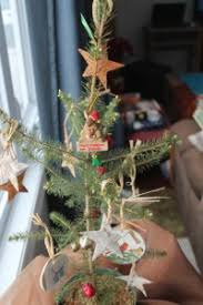 How To Trim A Real Christmas Tree - real live christmas tree millson forestry
