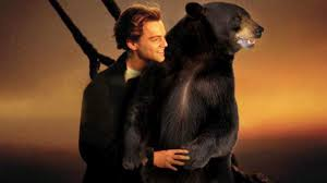 Funny Bear Meme - funniest bear memes that are going viral after leo won the oscar
