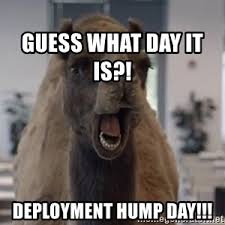 Meme Hump Day - geico camel hump day meme generator