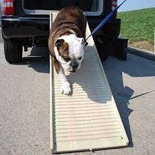amazon com petstep original folding pet ramp graphite gray