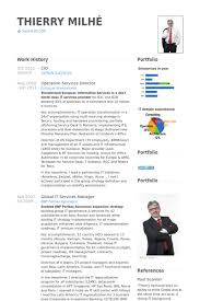 cio resume cio resume samples visualcv resume samples database