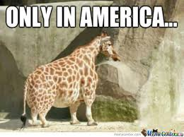 Giraffe Meme - giraffe meme frank
