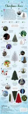 where did tree traditionchristmas origin of