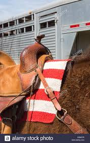 Horse With American Flag Horse Under Western Saddle Ready For Horseback Rider American