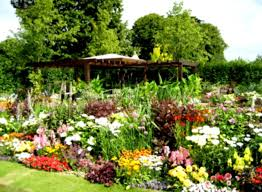 flower garden landscaping with green grass and colourful flowers