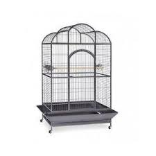 Birdcage Decor For Sale Vintage Bird Cage Ebay