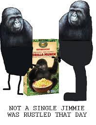 Gorilla Munch Meme - the new gorilla munch box bodybuilding com forums
