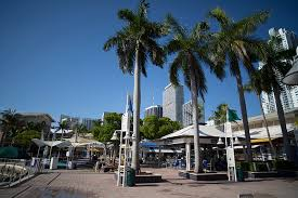 miami bureau of tourism the best souvenirs to buy in miami forbes travel guide stories