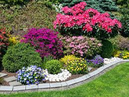 Small Garden Border Ideas Plants For Small Garden Borders Fearless Gardener