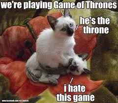 Funny Kitten Memes - 38 funny pictures of cats with captions