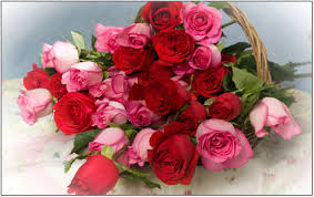 Fowers Surprise Your Loved Ones With Beautiful Fowers Lebox