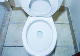 Ammonia Smell In Bathroom Removing Urine Odors From A Bathroom Thriftyfun
