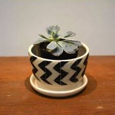 Black And White Planters by Jungalow Needs Plantastic Planters Planters Plants And Gardens