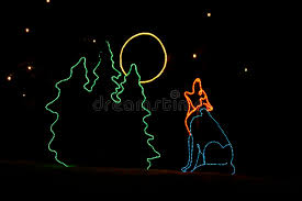 denver zoo lights hours denver zoo lights coyote editorial photo image of animals 6835186