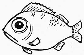 fish line drawing free download clip art free clip art on