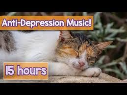 Mere Cat Meme - cat music mp3 free songs download carmen music site