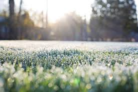 e sienna life landscaping tips for preparing your garden for winter