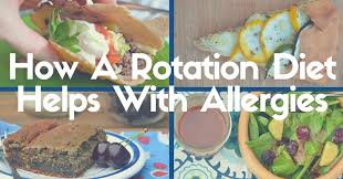 how a rotation diet helps with allergies just take a bite