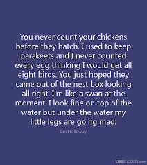 Never Count Your Chicken Before They Hatch Quote Don T Count Your Chickens Before They Hatch Like Success