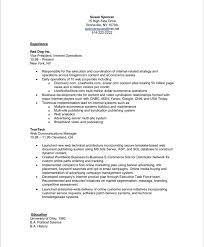 Publications On Resume Example by Executive Resume Makeover Digital Media Executive Blue Sky