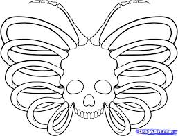 how to draw butterfly skull by butterflies animals