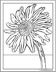 sunflower coloring 14 pdf printables