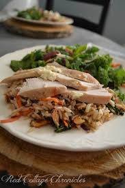 new year dinner recipe healthy dinner recipes for a healthy new you design dazzle
