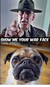War Face Meme - show me your war face carchie the pug star meme on me me