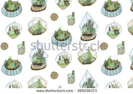 cactus terrarium vector download free vector art stock graphics