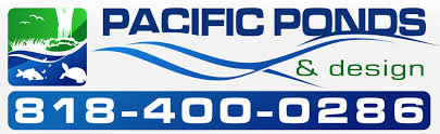 Pacific Aquascape Pacific Ponds U0026 Design Custom Pond Construction Pond Contractors