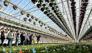 gertens greenhouses acquires linder s growing site in lake elmo