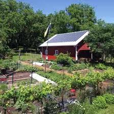 Box Garden Layout White House Vegetable Garden Layout Black High Iron Fences For