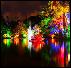Turtle Back Zoo Lights by Tsb Bank Festival Of Lights At Pukekura Park Colores Color