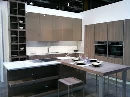 Contemporary Kitchen Design by Salomonsocks Com Contemporary Kitchen Design With