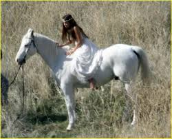 white mustang horse miley cyrus white horse whimsical photo 57431 photo gallery