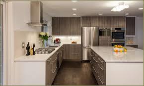 Modern Kitchen Cabinet Handles by Kitchen Modern Kitchen Color Cangkiirdynu Top Kitchen Colors