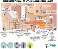 How To Get Rid Of Bugs In Kitchen Cabinets J T Eaton Kills Bed Bugs Contact Killer Tidy Home Pinterest