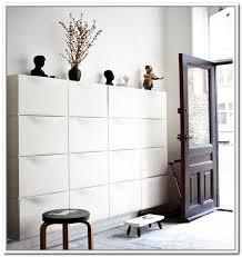 Wall Hung Shoe Cabinet Peachy Ikea Shoe Rack Design Ideas Color Metal Storage Racks Bars
