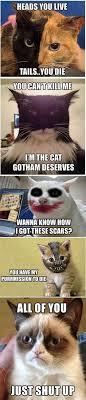 Cat Christmas Tree Meme - batman kitty edition meow pinterest cat christmas tree