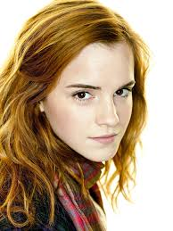 Hermione Granger In The 1st Movoe Talk Hermione Granger Harry Potter Wiki Fandom Powered By Wikia