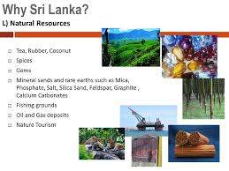 sri lankan l investment opportunities in sri lanka ppt